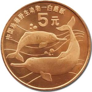 中國珍惜野生動物白鰭豚圖片