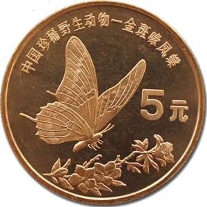 中国珍惜野生动物金斑喙凤蝶图片