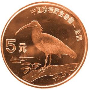 中国珍惜野生动物朱鹤图片